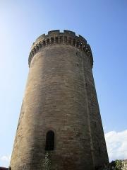 Château - Català: Vista des de baix de la torre gran del castell medieval de Foix