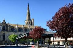 Ancienne cathédrale Saint-Maurice, actuellement église paroissiale -  Mirepoix, Ariège (Midi-Pyrénées) - Place des Couverts. En arrière-plan, la cathédrale St-Maurice.