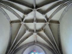 Eglise Saint-Pierre et oratoire - Canet-de-Salars - Église Saint-Pierre - Voûte à liernes et tiercerons d'une chapelle