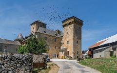 Ancienne grange monastique, dite château de Galinières, et ses annexes - English: Castle of Galinières, commune of Pierrefiche, Aveyron, France