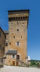 Ancienne grange monastique, dite château de Galinières, et ses annexes - English: Square tower of the castle of Galinières, commune of Pierrefiche, Aveyron, France