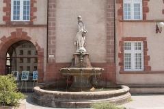 Ancien collège des Jésuites ou ancien lycée Foch -  Naiad of Vors, Fountain Gailly  (Late 19th century).