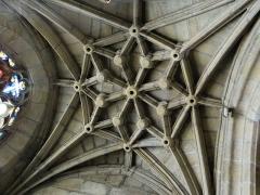Eglise - Salles-Curan - Église Saint-Géraud - Chapelle du Scapulaire (ancienne chapelle Notre-Dame): voûte à liernes et tiercerons avec 17 clefs