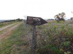 Dolmen et tumulus du Genevrier - Français:   Dolmen du Genevrier (Zone d\'accès)