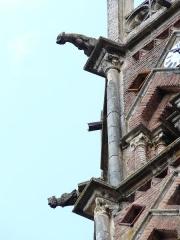 Ancienne cathédrale Sainte-Marie - Gargouilles du clocher de l'ancienne cathédrale de Rieux, Haute-Garonne, France.