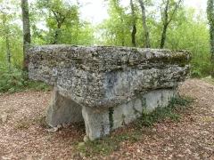 Dolmen de Pech-Lapeyre - Français:   Dolmen de Pech-Lapeyre dit aussi dolmen du Lac d\'Aurié