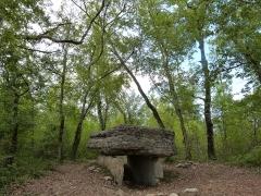 Dolmen de Pech-Lapeyre - Français:   Dolmen de Pech-Lapeyre in situ