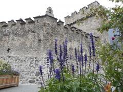 Eglise des Templiers -  Église de Saint André, dite des Templiers, Luz St Sauveur, Hautes Pyrénées