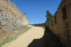 Deuxième porte de l'Irissou et ses deux tours d'enceinte - English: Puycelsi. City walls. Irissou gate: way between the first and second Irissou gates.