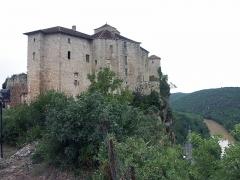 Ruines du château - Français:   Châteaux de Bruniquel, vue sud-est