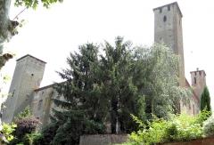 Château dit de Richard Coeur de Lion - Français:   Saint-Nicolas-de-la-Grave - Château de Richard Cœur de Lion