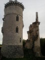 Château - les deux tours restantes qui abritent le musée de Charles VII