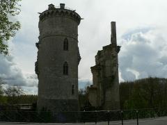 Château - Château de Mehun-sur-Yèvre