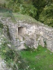 Château - Ancienne partie de l'intérieur du chateau abandonnée et envahie par la végétation