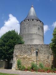 Château et ses abords - Château et mur de l'ancienne église Saint-Lubin de Châteaudun (Eure-et-Loir, France)
