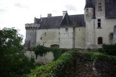 Château - Français:   Partie de la face Est du château de Palluau-Frontenac.