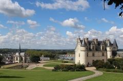 Château - Château d'Amboise