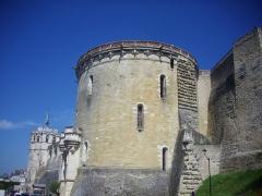Château - Château royal d'Amboise (Indre-et-Loire, France), tour Heurtault