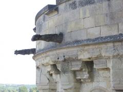 Château - Château royal d'Amboise (Indre-et-Loire, France), tour des Minimes vue depuis le promenoir des gardes