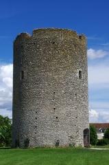 Tour du Brandon - Français:   La tour du Brandon à Athée-sur-Cher (Indre-et-Loire)