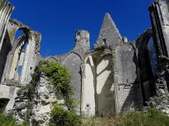 Ruines du château et de la collégiale des Roches-Tranchelion -  Collégiale Sainte-Marie et Saint-Jean-Baptiste des Roches-Tranchelion en Avon-les-Roches (37). Intérieur vu du sud-est.