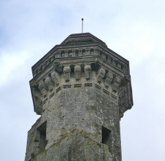 Château du Grand Pressigny - Français:   Vue du couronnement de la «tour Vironne». Château du Grand-Pressigny, Indre-et-Loire, Centre, France.