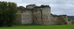 Ruines du donjon d'Etableaux - Français:   Le château d\'Étableau vu du nord-ouest, commune du Grand-Pressigny, Indre-et-Loire, Centre, France.