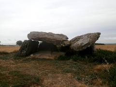 Dolmen dit Le Carroir Bon Air - Français:   Le dolmen de Ligré dit Le Carroir Bon Air