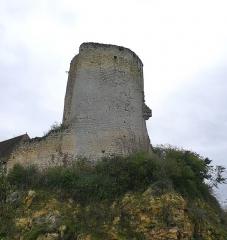 Château du Châtelier - Français:   Vestiges du donjon du château du Châtelier, commune de Paulmy, Indre-et-Loire, Centre, France.