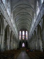 Cathédrale Saint-Louis - Cathédrale Saint-Louis de Blois (Loir-et-Cher, France)