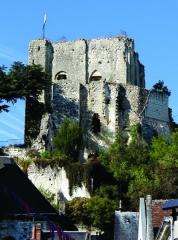 Ancien château - Nederlands: Het kasteel van Montrichard, Loir-et-Cher, Centre, werd opgetrokken in het begin van de XIe eeuw en vergroot aanvang XIIe eeuw na de inname door Hugues I d'Amboise in 1109. Het zijn de overblijfselen hiervan die tot ons gekomen zijn. In dezelfde eeuw - in 1188 - werd de sterkte gedeeltelijk verwoest door de Franse koning Philippe II - Philippe Auguste.