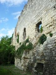 Ancien château - Murailles du donjon de l'ancien château de Montrichard (Loir-et-Cher, France), ouvrage militaire du onzième siècle.