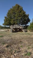 Dolmen de Langault - Français:   Dolmen de la Coutur, Saint-Hilaire-la-Gravelle, Loir-et-Cher, France