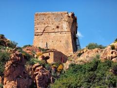 Tour génoise de Porto -  Ota, Ouest Corse - Zoom sur la tour génoise de Porto