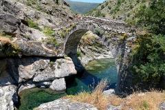 Pont génois -  Asco (Corse) - Pont génois sur la rivière Asco, vu depuis l'amont du pont