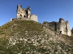 Ensemble castral -  Le donjon, vue depuis le sud-est.