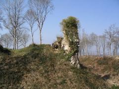 Ruines du château fort - Français:   Ruines du château-fort de Montfort-sur-Risle