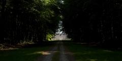 Château de Miromesnil (également sur commune de Saint-Aubin-sur-Scie) - This building is inscrit au titre des monuments historiques de la France. It is indexed in the base Mérimée, a database of architectural heritage maintained by the French Ministry of Culture,under the reference PA00101064 .