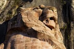 Lion sculpté par Bartholdi -  La tête du Lion de Belfort.