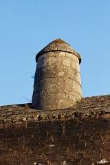 Lion sculpté par Bartholdi -  Les fortifications de la citadelle de Belfort.  La demoiselle était une construction qui empéchait la progression de l'ennemi sur le faîte de la fortification.