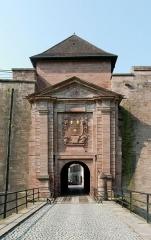 Château, actuellement musée d'Art et d'Histoire, et enceinte urbaine - French photographer