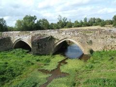 Ancien pont de Taizon (également sur communes de Argenton-l'Eglise et Saint-Martin-de-Sanzay) -  Pont de Taizon (79)