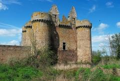 Ruines du château de l'Ebaupinay ou de Baupinay - Français:   Château de l\'Ébaupinay (Classé)