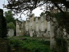 Ruines du château de Mursay - Français:   Château de Mursay, à Échiré (Deux-Sèvres, France)