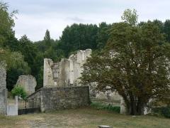Ruines du château de Mursay - Français:   Entrée du château de Mursay, à Échiré (Deux-Sèvres, France)