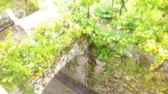 Ancienne abbaye - Abbaye Saint-Pierre de Baume-les-Messieurs