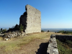 Restes du château de Miramont - English: Barbeira Château de Miramont