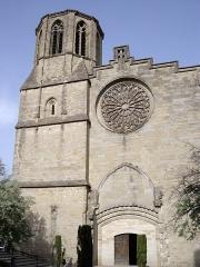 Cathédrale Saint-Michel et abords -  Cathédrale Saint-Michel de Carcassonne (Aude - 11)