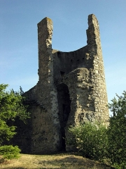 Tour de Plaisance et restes de remparts contigüs - Català: Torre de Plasença (La Grassa)