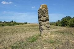 Menhir - English: Menhir in Malves-en-Minervois, Aude, France